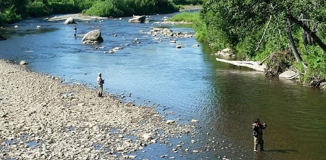 People Fly Fishing