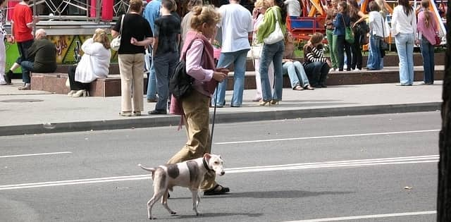 woman walking dog down the street