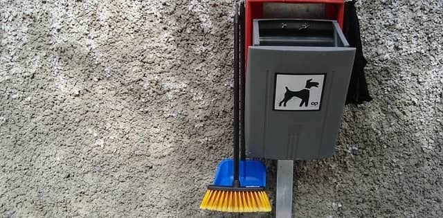Tools used to clean up dog waste